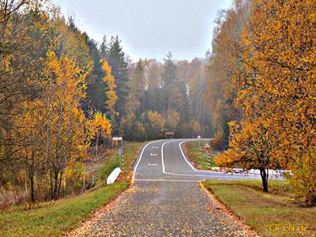 дорога на лесную - осень